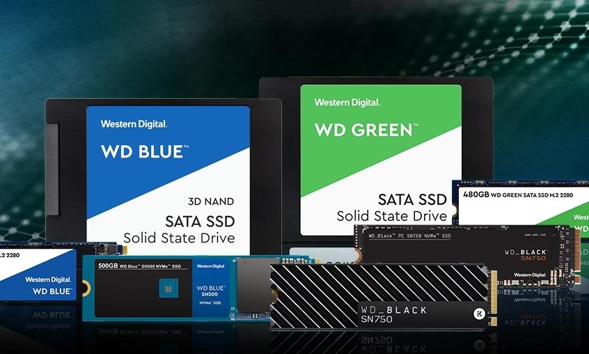 Portfolio 2019 | SSD