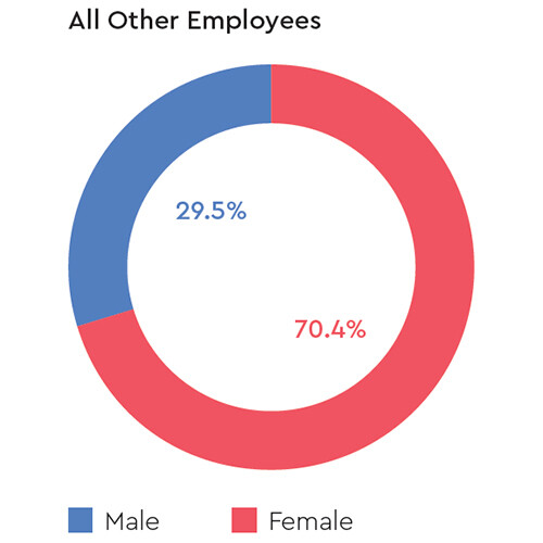 mobile-gender-all-other-employees-western-digital