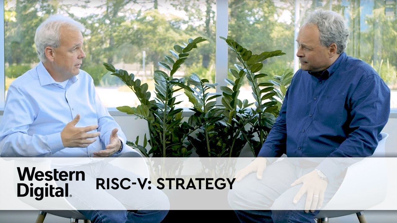 RISC-V strategy