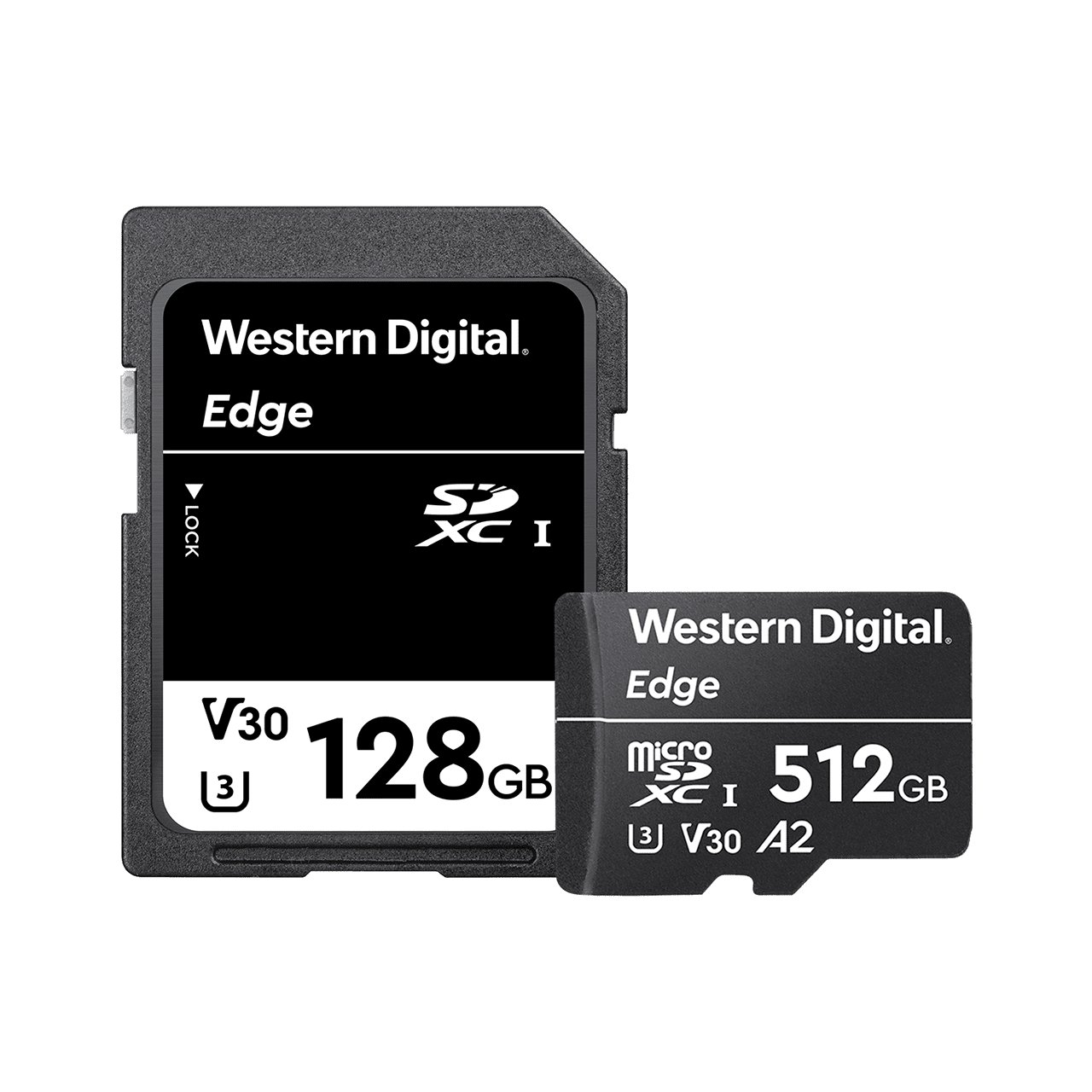9d8ddf0761f product-hero-image-commercial-sd-and-microsd-cards