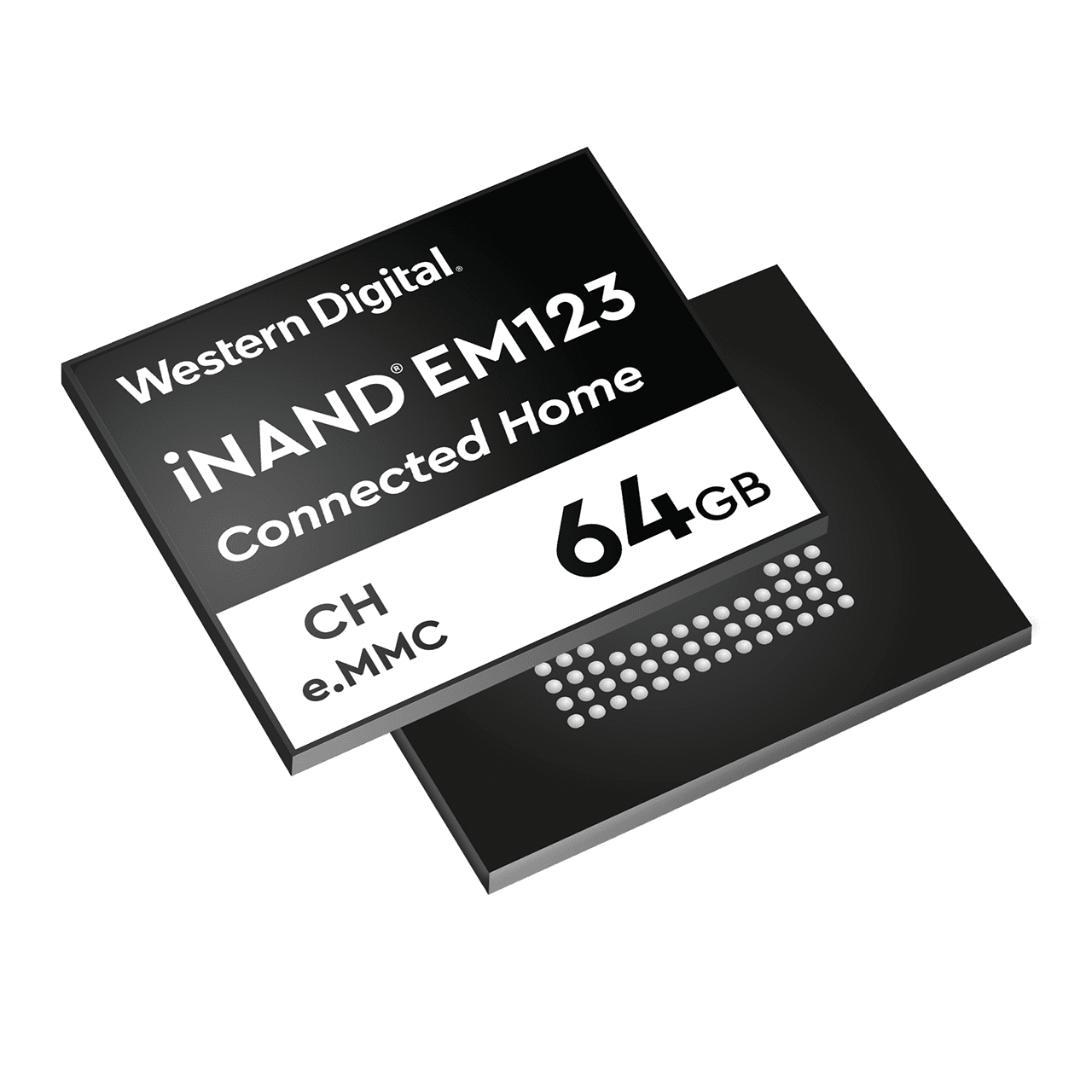 Connected Home iNAND e MMC Embedded Flash Drives
